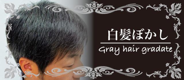 髪ファッション四季